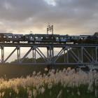 鉄橋とすすき