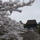 吉水神社~