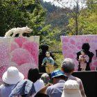 吉野と伝統芸能2